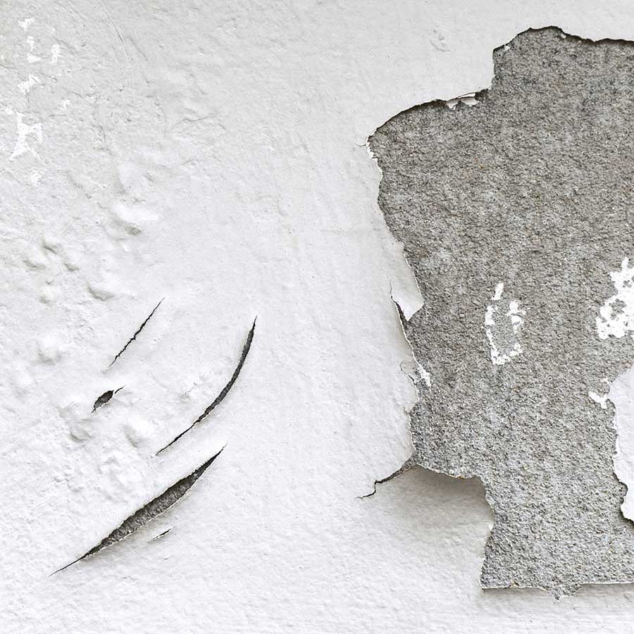 Risse in der Fassade begünstigen Schimmelbefall